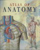 Atlas of Human Anatomy (2005, Paperback, Reprint)
